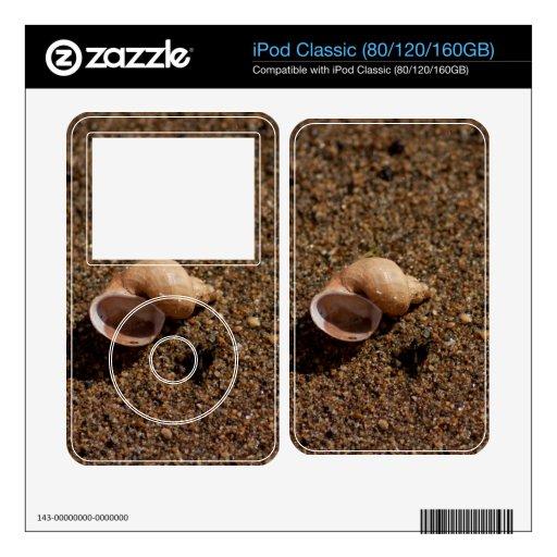 Freshwater Snail Shell Skins For iPod