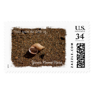 Freshwater Snail Shell Stamp