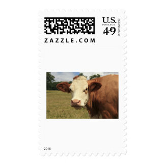 Fresian cow stamp