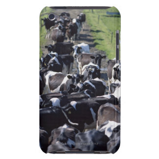 Fresian Dairy Cows, Awaiting Milking, Co Laois, iPod Touch Case