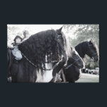 "Fresian, Horses Canvas Print<br><div class=""desc"">Wall decor for the fresian horse fan</div>"