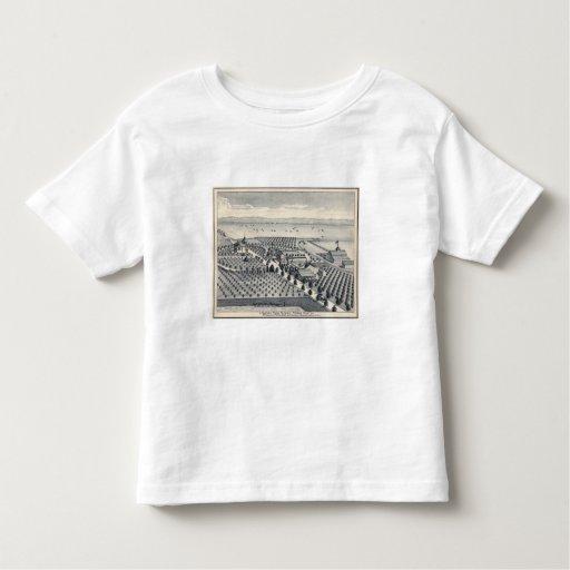 Fresno County, California 20 Toddler T-shirt