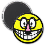 Disguised smile   fridge_magents_magnet