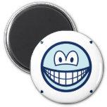Delft blue smile   fridge_magents_magnet