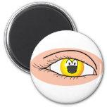 Eye emoticon   fridge_magents_magnet