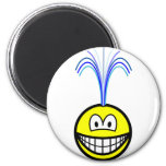 Fountain smile   fridge_magents_magnet