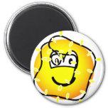 Xmas lights emoticon   fridge_magents_magnet
