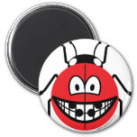 Ladybird smile   fridge_magents_magnet