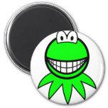 Kermit the Frog smile   fridge_magents_magnet