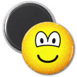 Fuzzy emoticon or emoticon after accidentally falling into the washing-machine  fridge_magents_magnet