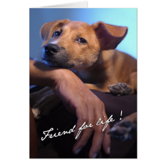 Friend For Life Note Card