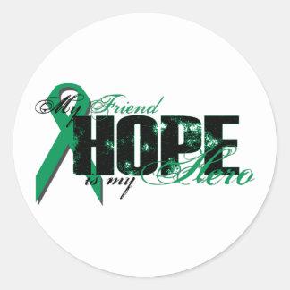 Friend My Hero - Kidney Cancer Hope Classic Round Sticker