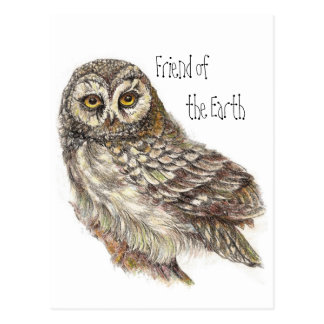 Friend of the Earth, Earth Day Owl, Bird Postcard