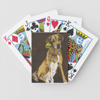 Friend or Food? Bicycle Playing Cards