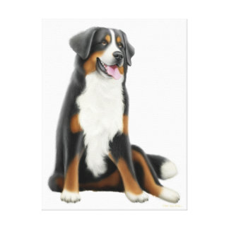 Friendly Bernese Mountain Dog Wrapped Canvas Stretched Canvas Print