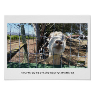 Friendly Billy Goat-Not-Gruff Along Ultimate Napa Poster