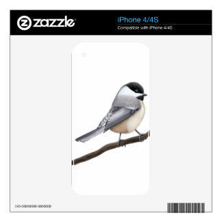 Friendly Black Capped Chickadee Zazzle Skin Decal For The iPhone 4