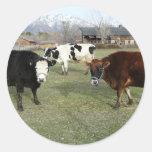 friendly cows round stickers