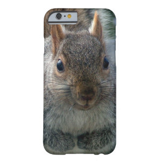 Friendly Giant Squirrel Barely There iPhone 6 Case