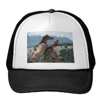FRIENDLY GIFTS TRUCKER HAT