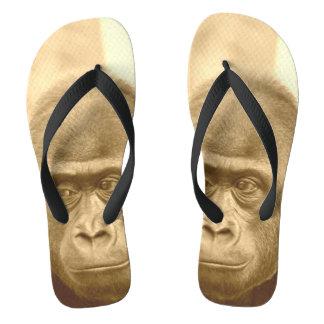 friendly gorilla, sepia flip flops