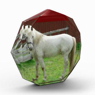 FRIENDLY HORSE ACRYLIC AWARD