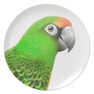 Friendly Jardines Parrot Plate