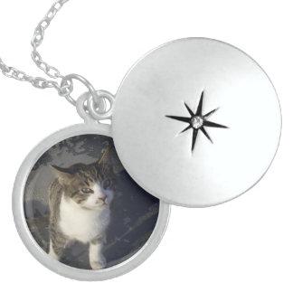 Friendly Kitten Sterling Silver Necklace