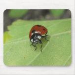 Friendly Ladybug Mousepad