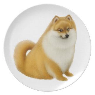 Friendly Little Pomeranian Dog Plate