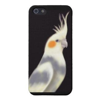 Friendly Pied Cockatiel Parrot iPhone Case