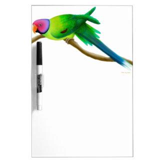 Friendly Plum Headed Parakeet Dry Erase Board