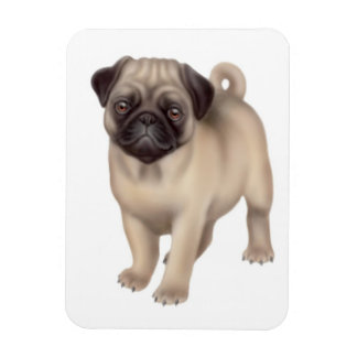 Friendly Pug Dog Premium Magnet