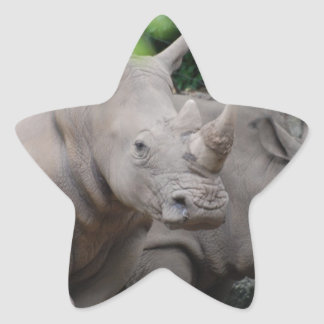 Friendly Rhino Star Sticker
