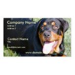 Friendly Rottweiler Dog Business Card