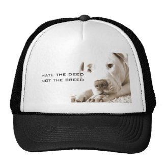 friendly sleepy white pitbull hate deed not breed trucker hat