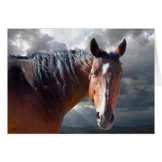 Friendly Support - Big Bay Horse - Ranch or Farm Card