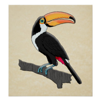 Friendly Toucan on Branch Posters