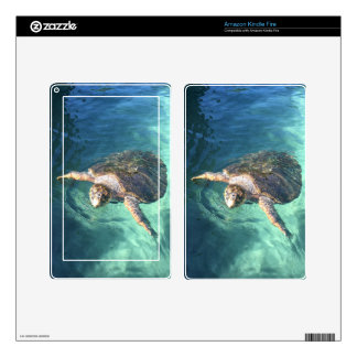 Friendly Turtle in Mexico Skins For Kindle Fire