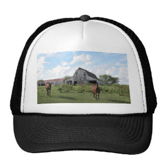 Friendly Welcome Trucker Hat