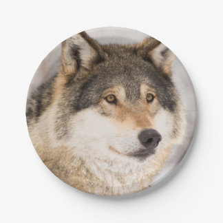 Friendly Wolf smiling paper plates