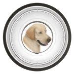 Friendly Yellow Labrador Retriever Dog Bowl Pet Bowl