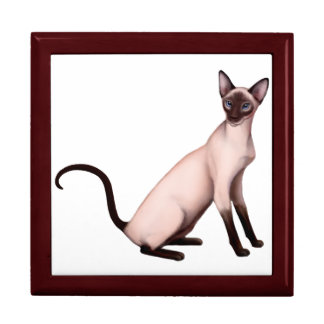Friendly Young Siamese Cat Gift Box