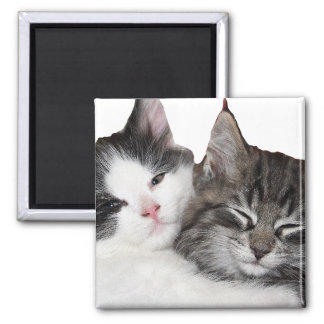 Friends 2 Inch Square Magnet