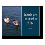 Friends Are... Canvas Poster
