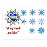 Friends are Flakes Postcard