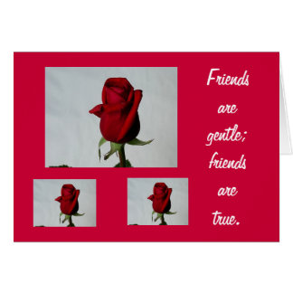 Friends are Gentle Cards