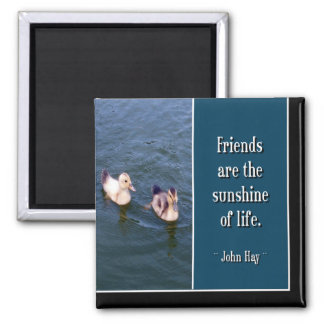 Friends Are... Magnet