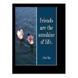 Friends Are... Postcard