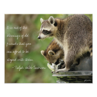 Friends & Blessings Friendship Quote Raccoon 14x11 Poster